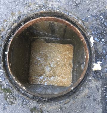 屋外排水マス詰まり(前)